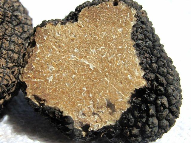 Bulgarian Truffles